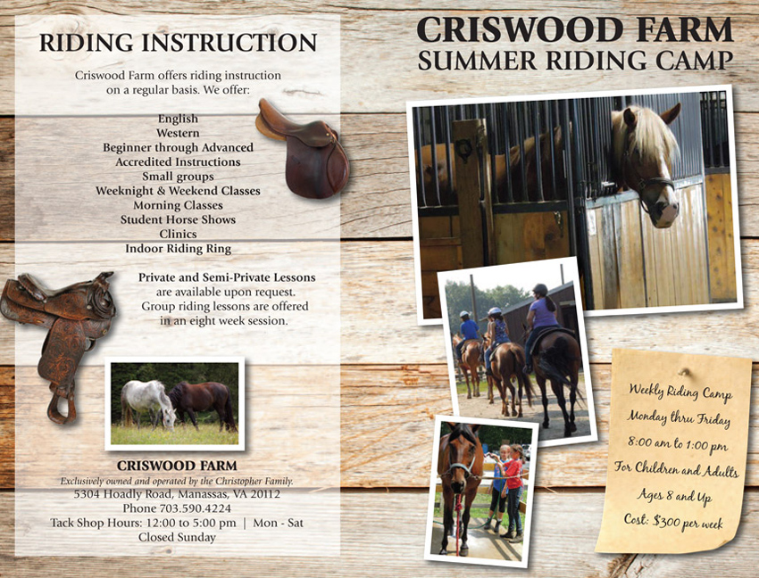 Horse Summer Camp in Northern Virginia | Criswood Farm and Tack shop